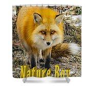 Red Fox Nature Boy Shower Curtain