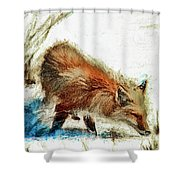 Red Fox Painted Series Shower Curtain