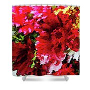 Red Gerbera Daisy Abstract Shower Curtain