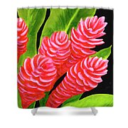 Red Ginger Flowers #235 Shower Curtain