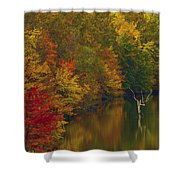 Red Gold And Green Shower Curtain