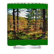 Red, Gold And Green Shower Curtain