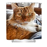 Red-haired Kitten Shower Curtain