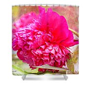 Red Haired Lady Shower Curtain