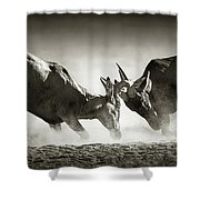 Red Hartebeest Dual In Dust Shower Curtain