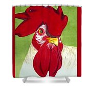 Red Hat Diva Shower Curtain