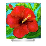 Red Hawaii Hibiscus #238  Shower Curtain
