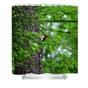Red Headed Beauty Shower Curtain