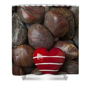 Red Heart Among Stones Shower Curtain