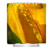 Red Hem On Yellow Dress Shower Curtain