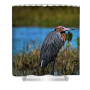 Red Heron Shower Curtain