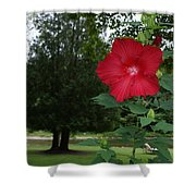 Red Hibiscus Highlights A Scene On The River Shower Curtain