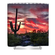 Red Hot Sonoran  Shower Curtain