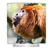 Red Howler Monkey Alpha Male Shower Curtain