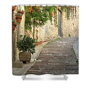 Red Ivy And Steps In Assisi Italy Shower Curtain
