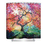 Red Japanese Maple Shower Curtain