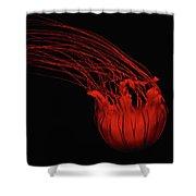 Red Jellyfish Shower Curtain