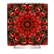 Red Kaleidoscope No. 1 Shower Curtain