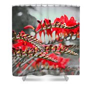 Red Lady Fingers Shower Curtain