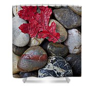 Red Leaf Wet Stones Shower Curtain