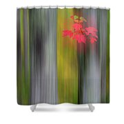 Red Leaves - Abstract Shower Curtain by Gary Lengyel