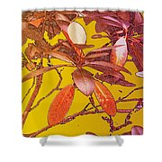 Red Leaves Gold Sunset Shower Curtain