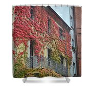 Red Leaves Of Fall Shower Curtain