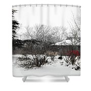 Red Leaves On White Snow Shower Curtain