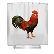 Red Leghorn Rooster Shower Curtain