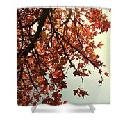 Red Life Shower Curtain
