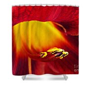 Red Lily Center 4 Shower Curtain