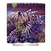 Red Lionfish Art Shower Curtain