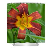 Red Magic Shower Curtain