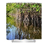 Red Mangrove Roots Reflections In The Gordon River Shower Curtain