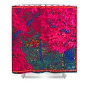 Red Maple 1 Shower Curtain