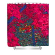 Red Maple 1 Version 1 Shower Curtain