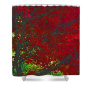 Red Maple 3 Version 1 Shower Curtain