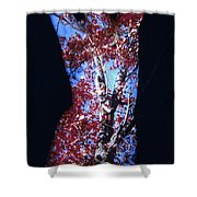 Red Maple Shower Curtain by Arla Patch
