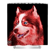 Red Modern Siberian Husky Dog Art - 6024 - Bb Shower Curtain