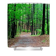 Red Mountain Trail  Shower Curtain