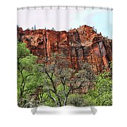 Red Mountains Zion National Park Usa Shower Curtain