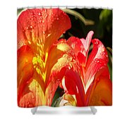 Red N Yellow Flowers 2 Shower Curtain