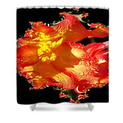 Red N Yellow Flowers Shower Curtain