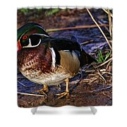 Red Nose Duck Shower Curtain