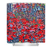 Red  Oak Leaves  Shower Curtain