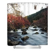 Red Oak Slow River Shower Curtain