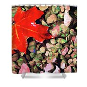 Red On The Rocks Shower Curtain by Jeff Kolker