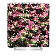 Red Pagoda Shower Curtain