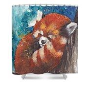 Red Panda Sleeping Shower Curtain