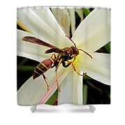 Red Paper Wasp And Spider Lily 001 Shower Curtain